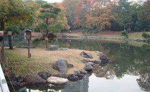 Japan Nov 2010 055